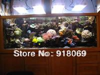 free shipping 120W LED aquarium lightings