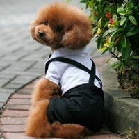 Suspenders blazer wedding dress autumn and winter teddy dog clothes pet supplies