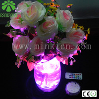 MINKI IP68 DC4.5V  waterproof  13colors   remote control led 2013 newest  home decoration