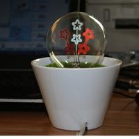 Lyl flower light dcrv lamp bonsai light small night light ofhead