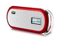 Rogor q9 portable card speaker mini stereo mp3 player fm radio walkman with 4GB SD card