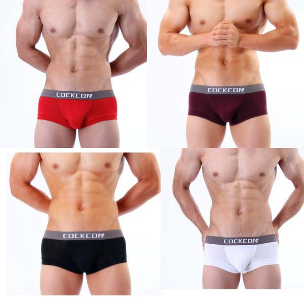 Men's Underwear Briefs Boner
