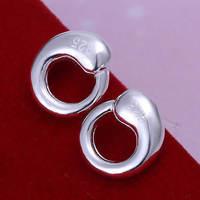 Lose money Promotion! Wholesale 925 silver earrings, 925 silver fashion jewelry, Tai Chi Earrings E056