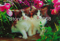 Free shipping item no.YX1088,3D picture,Logo:2 doll cats sit together in flowers;size 25x35cm or 40x60cm,50pc/lot;new home decor