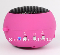 free shipping 2012 new high end 5 in 1 function MP3 Speaker FM radio Card reader Sound card portable mini speaker