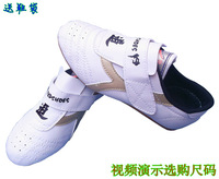 Cow muscle outsole velcro taekwondo shoes adult child sports shoes