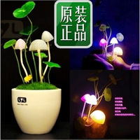 Household Goods Discount Store Mushroom lamp birthday gift