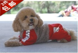 2 short in size jimmy doll bling pet clothes autumn and winter sweatshirt dog clothes teddy(China (Mainland))