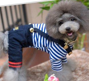 La phrase en image  -font-b-Lovely-b-font-Dog-font-b-Clothes-b-font-Pet-Leisure-wear-Pet