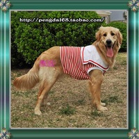 2013 spring and summer cotton pet navy shirt sailor shirt lovers Striped vest