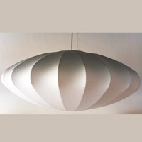 Pendant light series