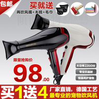 High power 2200w pet supplies pet hair dryer cat dog hair dryer electric blow tube