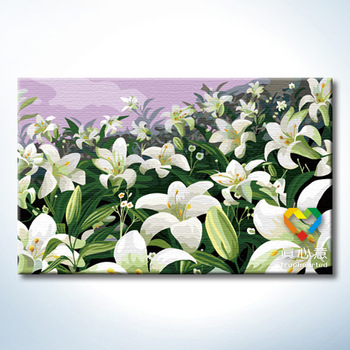 Colored drawing diy digital oil painting lily style 50 80