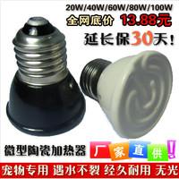 Reptile supplies micro mini ceramic heated lamp pet heat lamp far infrared heated device eye-lantern lamp