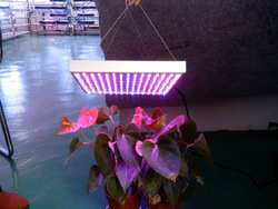 15w led grow light 225X0.07w use for Growing Tomato,Lettuce,Vegetables flower led indoor plant lights(China (Mainland))
