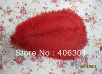 "wholesale FREE SHIPPING 600pcs/lot 12-14"" Ostrich Feather Plume"