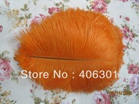"wholesale FREE SHIPPING 500pcs/lot 12-14"" Ostrich Feather Plume"