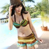 Hot spring swimsuit bikini dress small steel push up female swimwear