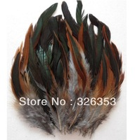 Free shipping 200pcs Natural dark Rooster feathers 5-7inche Dress jewelry/Christmas/Halloween decoration