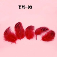 Real Feathers Nail Art Red Color Polka Dot Craft Decoration Kit 90-100pcs/lot  #YM-03