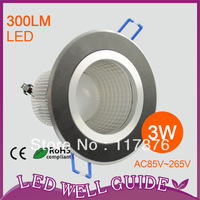 2013 NEW DESIGN 2pcs/lot 3W High Power LED Downlight,CE&ROHS,2 year warranty Warm White / Cool White AC85V~265V Free Shipping