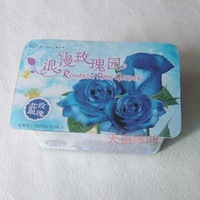 Diy mini romantic rose garden lovers green bonsai blue rose
