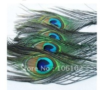 100pcs/lot natural peacock tail Feather peacock plume 25-30cm beautiful 100% for diy wedding accessories FREE SHIPPING