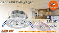 Праздничное освещение 9W 110/240v 20