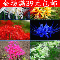 Free shipping Amaryllis flower beads sand flower(China (Mainland))