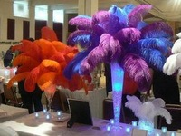 """Free Shipping  Wholesale prices,16""""- 18""""  inches 40-45cm  length,100pcs/lot,ostrich feathers for wedding decoration"""