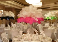 "Free Shipping  Wholesale prices,12""- 14""  inches 30-35cm  length,100pcs/lot,ostrich feathers for wedding decoration"