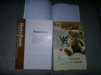 22 general soft this notebook tsmip diary