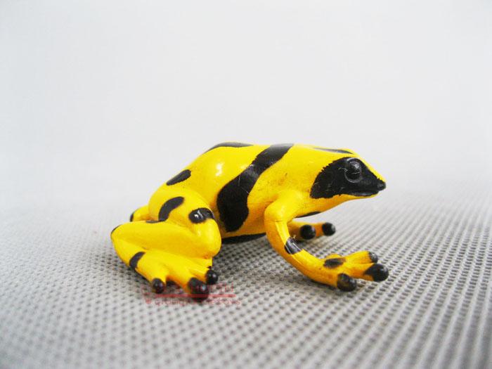 Safari ! solid animal model toy yellow poison frog(China (Mainland))