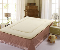 12-free shipping Tatami berber fleece mattress thickening home textile single double faced slip-resistant thickening mattress