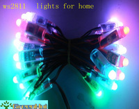 Free shipping 50pcs/string,ws2811 IP68 led pixel module,256scale gray,DC5V input,LED exposed string lights,Waterproof