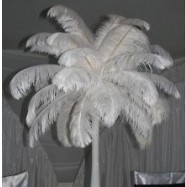 2013 Wholesale-6-8inch 15-20cm 100pcs/lot Rose Red Ostrich Feather Wedding Decoration L1-016