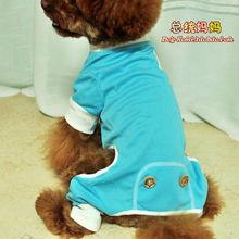 dogs service promotion