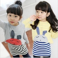 Комплект одежды для девочек Yarn tulle dress long t-shirt layered clothing set 2013 summer female big girl baby children's clothing