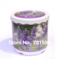 Free Shipping New Mini Office lavender Plants Creative Gifts