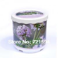 Free Shipping New Mini Office Drive Midge Grass Plants Creative Gifts
