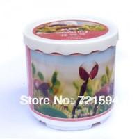 Free Shipping New Mini Office Venus Flytrap Plants Creative Gifts