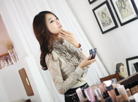 Free shipping 2013 spring casual shirt long-sleeve chiffon female shirt slim basic shirt plus size