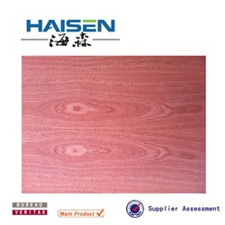 natural sapele wood both side laminated,best price veneer plywood for decoration from linyi(China (Mainland))