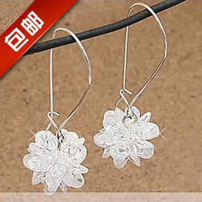 Popular accessories icepatterned long hook crystal earrings vintage