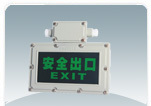 Explosion-proof lights byy series c ,
