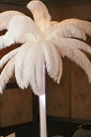 2013 Wholesale-6-8inch 15-20cm 100pcs/lot Ostrich Feather Wedding Decoration L1-081