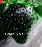 100 Seeds HERMETIC PACKAGE BLACK STRAWBERRY SEEDS Free Shipping