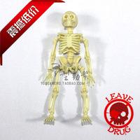 Large human model skull skeleton skull 11cm model