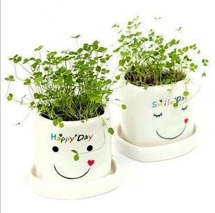 Day gift lovers design mini plants gift exude grass doll bonsai lucky,heart shape kawii cute lovers grass plant ,good gift(China (Mainland))