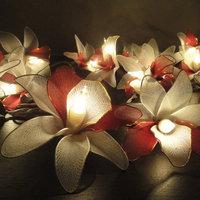 20 White Burgundy Orchid Flower Fairy String Lights  3.5M